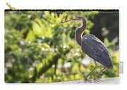 Tri-colored Heron Fledgling  Carry-all Pouch