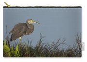 Tri-colored Heron In The Morning Light Carry-all Pouch