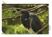 Tricolored At Rest  Carry-all Pouch