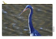Tricolored Heron Pose Carry-all Pouch