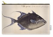 Trigger-fish, 1585 Carry-all Pouch