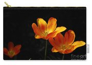Triples Carry-all Pouch by Lois Bryan
