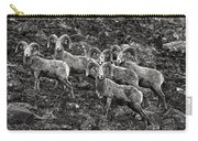 Trophy Rams Carry-all Pouch