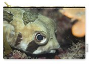 Tropical Fish Porcupinefish  Carry-all Pouch