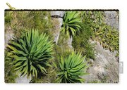 Agave Plants On Rocky Slope Carry-all Pouch