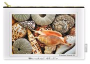 Tropical Shells... Greeting Card Carry-all Pouch by Kaye Menner