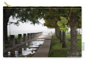 Tropical Storm Hermine Carry-all Pouch