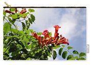 Trumpet Vine Carry-all Pouch