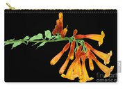 Trumpet Vine, X-ray Carry-all Pouch