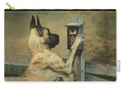 Tucker And The Birdhouse Carry-all Pouch