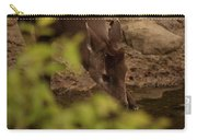 Tufted Deer  Carry-all Pouch