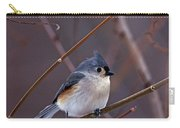 Tufted Titmouse In Winter Carry-all Pouch