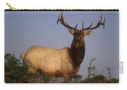 Tule Elk - Tomales Point Carry-all Pouch