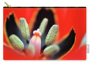 Tulip At Amatzia Forest - 5 Carry-all Pouch