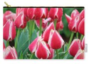 Tulips - Candy Apple Delight 02 Carry-all Pouch