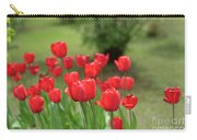 Tulips In Spring 3 Carry-all Pouch