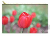 Tulips In Spring 4 Carry-all Pouch