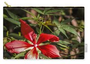 Turk's Cap 2 Carry-all Pouch
