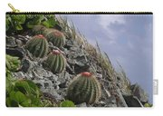 Turks Cap Cactus Carry-all Pouch