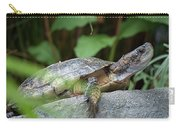 Turtle Rock Carry-all Pouch