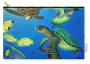 Turtle Towne Carry-all Pouch