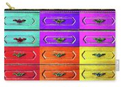 Twelve Options 1. Carry-all Pouch