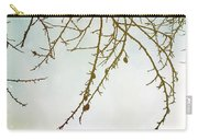 Twigs And Winter Sky Two Carry-all Pouch