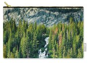 Twin Lakes Waterfall Carry-all Pouch