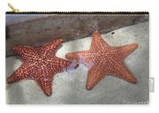 Twin Stars Carry-all Pouch