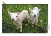 Twins - Spring Lambs Carry-all Pouch