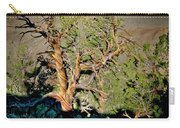 Twisted Bristlecone Carry-all Pouch