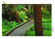 Twisting Path Through The Woods Carry-all Pouch