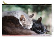 Two Cats  Sleeping  Carry-all Pouch