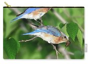 Two Eastern Bluebirds Carry-all Pouch