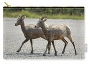 Two Female Longhorn Sheep Carry-all Pouch