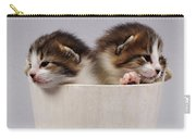 Two Kittens In A Wooden Bucket Carry-all Pouch