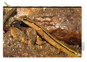 Two Lined Salamander Carry-all Pouch