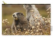 Two Marmots Carry-all Pouch