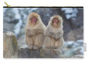 Two Monkeys Carry-all Pouch