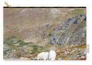 Two Mountain Goats On Mount Bierstadt In The Arapahoe National Fores Carry-all Pouch