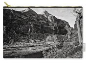 Two Peaks - Bw Carry-all Pouch