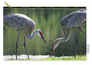 Two Sandhills By The Water Carry-all Pouch
