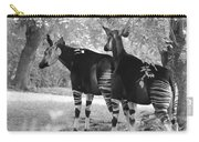 Two Stipers In Black And White Carry-all Pouch
