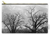 Two Trees Flatirons Boulder Colorado Carry-all Pouch