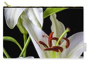 Two Wonderful Lilies  Carry-all Pouch