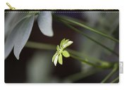 Umbrella Plant Carry-all Pouch