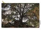 Under Spanish Moss Carry-all Pouch by David Lee Thompson