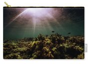 Underwater Sunset Carry-all Pouch