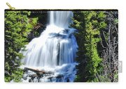 Undine Falls Carry-all Pouch