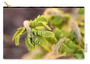 Unfolding Fern Leaf Carry-all Pouch